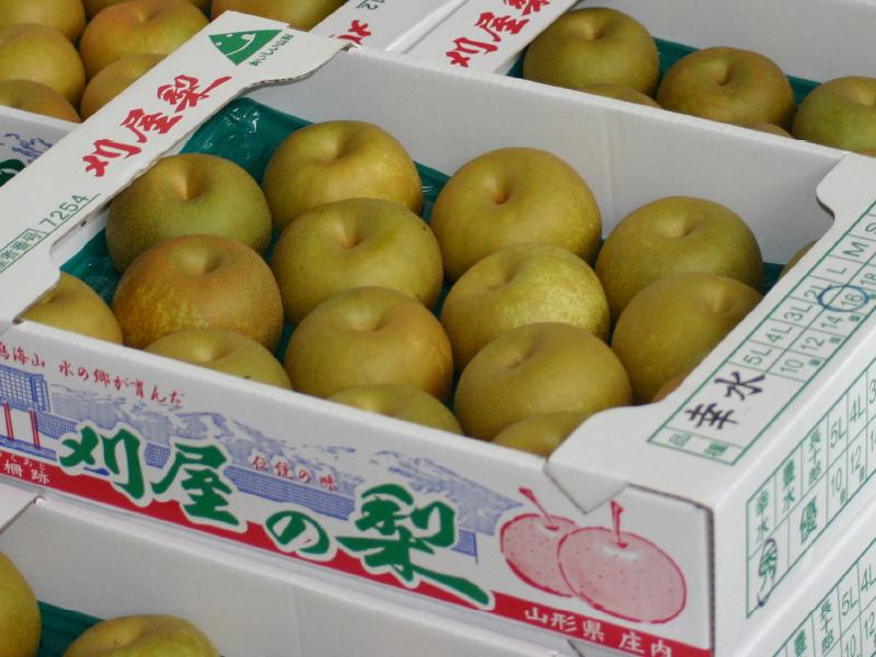 櫛引産の梨
