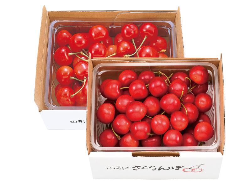 さくらんぼ食べ比べセット(1)