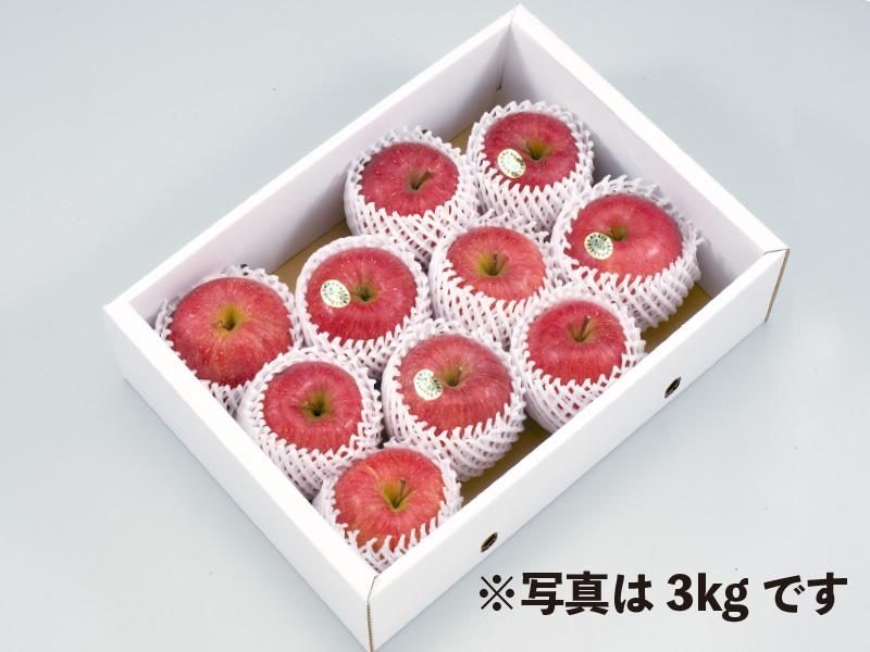 秀品山形サンふじりんご約5kg20玉(家庭用)