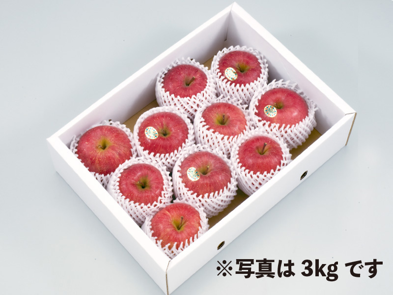 秀品山形サンふじりんご約5kg16〜18玉(家庭用)