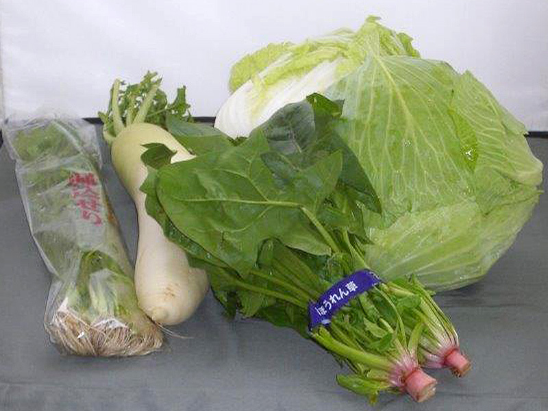 山形野菜5点セット